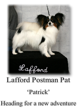 Lafford Postman Pat 'Patrick' Heading for a new adventure