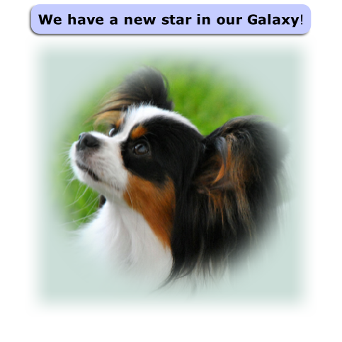 We have a new star in our Galaxy!